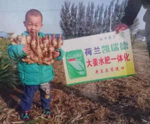 China May 2019